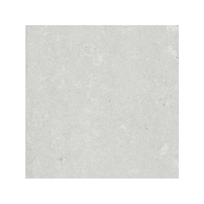 Delta Light Grey Polished 60cm X 60cm Floor Tile